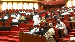 Nigerian-Senate-1024x574
