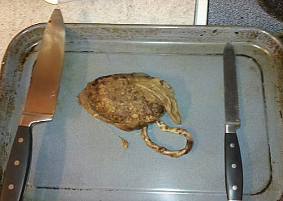 Placenta Chop