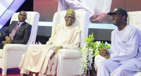 Trouble For Amaechi & Fashola As Senate Rules That Two Senators From Nominees States Must Endorse Candidates