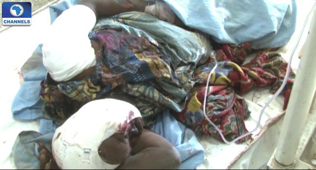 Dalori Borno 4