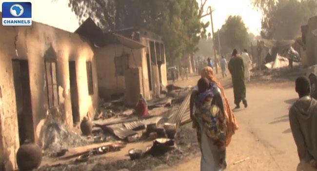 Dalori Borno 8