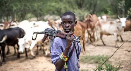 Herdsmen Invade Benue Prison Farm, Kills Inmate