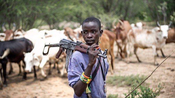 Image result for armed herdsmen