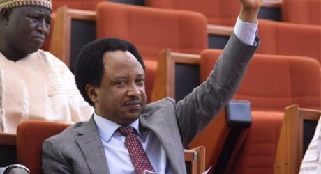 Senator Shehu Sani Says Companies Awarded Contracts by PINE Cannot be Traced